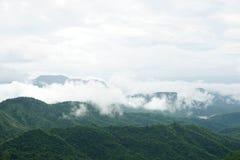Paisagem da montanha da manhã com as ondas da névoa e do céu nebuloso Imagem de Stock