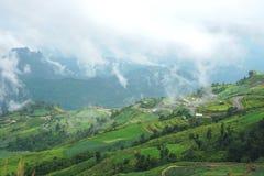 Paisagem da montanha da manhã com as ondas da névoa e do céu nebuloso Fotografia de Stock Royalty Free