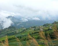 Paisagem da montanha da manhã com as ondas da névoa e do céu nebuloso Imagens de Stock