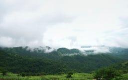 Paisagem da montanha da manhã com as ondas da névoa e do céu nebuloso Wav Imagem de Stock