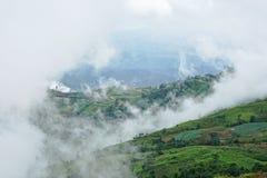 Paisagem da montanha da manhã com estrada curvada, ondas da névoa Imagem de Stock