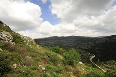 Paisagem da montanha da mola, Israel Foto de Stock Royalty Free