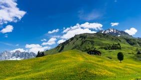 Paisagem da montanha de Gorgoues perto de Klosters em Suíça em um dia de verão fantástico imagem de stock