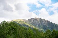 Paisagem da montanha de montanhas caucasianos Fotos de Stock