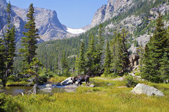 Paisagem da montanha de Rockt Fotografia de Stock