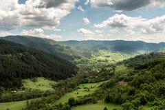 Paisagem da montanha de Zlatibor imagens de stock royalty free