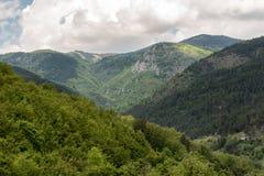 Paisagem da montanha de Zlatibor fotos de stock