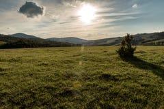 Paisagem da montanha de Zlatibor fotos de stock royalty free