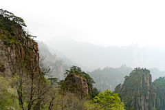 Paisagem da montanha do amarelo da montanha de Huangshan, Anhui, China com pássaros pretos Foto de Stock