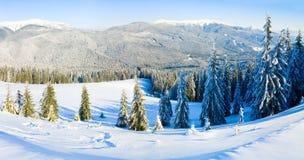 Paisagem da montanha do inverno Fotos de Stock Royalty Free