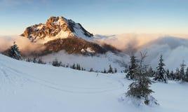 Paisagem da montanha do inverno com árvore fotografia de stock royalty free
