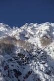 Paisagem da montanha do inverno com árvores cobertos de neve Fotografia de Stock Royalty Free