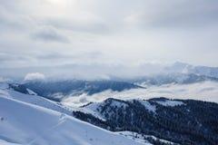Paisagem da montanha do inverno com os picos cobertos com a neve e a floresta nas nuvens Fotografia de Stock Royalty Free