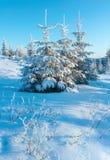 Paisagem da montanha do inverno do nascer do sol Foto de Stock Royalty Free