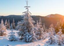 Paisagem da montanha do inverno do nascer do sol Foto de Stock