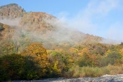 Paisagem da montanha do outono Imagem de Stock Royalty Free