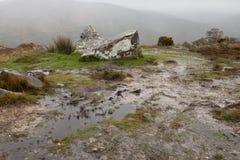 Paisagem da montanha do outono após a chuva Imagens de Stock Royalty Free