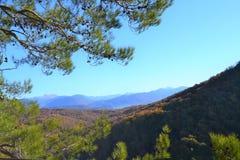 A paisagem da montanha do outono com Eagle balança imagem de stock royalty free