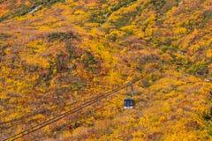 Paisagem da montanha do outono e do ropeway do teleférico, rota alpina, cumes de Tateyama Japão imagens de stock royalty free