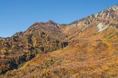 Paisagem da montanha do outono, rota alpina, cumes de Tateyama Japão foto de stock