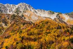 Paisagem da montanha do outono, rota alpina, cumes de Tateyama Japão imagem de stock royalty free