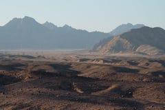 Paisagem da montanha do por do sol, Egito, Sinai sul fotografia de stock royalty free