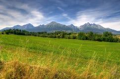 Paisagem da montanha do verão Foto de Stock Royalty Free