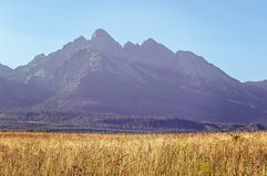 Paisagem da montanha do verão Imagem de Stock