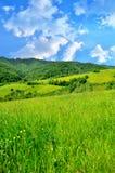 Paisagem da montanha em Romania Imagem de Stock