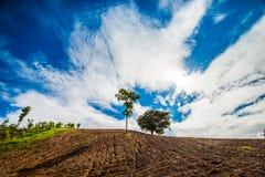 Paisagem da montanha em Tailândia Imagens de Stock Royalty Free