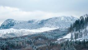 Paisagem da montanha em um dia de inverno nebuloso Fotografia de Stock