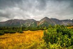 Paisagem da montanha em um dia nebuloso Imagem de Stock Royalty Free