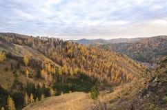 Paisagem da montanha em um dia nebuloso do outono em Rússia Fotografia de Stock Royalty Free