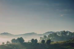 Paisagem da montanha enevoada em Forest Hills imagem de stock royalty free