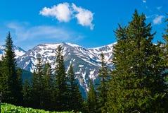 Paisagem da montanha na primavera Fotografia de Stock Royalty Free