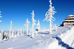 Paisagem da montanha no inverno Fotografia de Stock