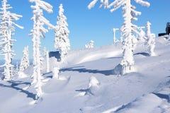 Paisagem da montanha no inverno Imagem de Stock Royalty Free