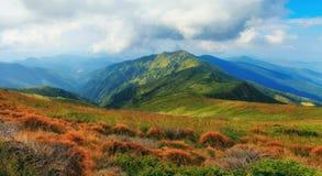Paisagem da montanha no verão Fotos de Stock