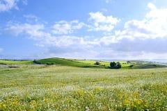 Paisagem da montanha - planeta verde - terra - panorama Imagem de Stock