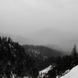 Paisagem da montanha, preto e branco Fotos de Stock