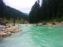 Paisagem da natureza da beleza de Pahalgam Kashmir foto de stock royalty free
