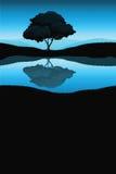 Paisagem da natureza com árvore Fotos de Stock Royalty Free