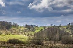 Paisagem da natureza com campos e árvores Imagens de Stock
