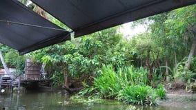 A paisagem da natureza com lado do rio relaxa o verde da zona Foto de Stock