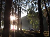 Paisagem da natureza de Tailândia para acampar foto de stock royalty free