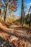 Paisagem da natureza do outono Fotos de Stock Royalty Free