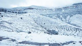 Paisagem da neve da montanha fotos de stock