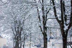 Paisagem da neve no inverno Fotos de Stock Royalty Free