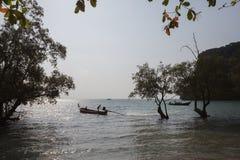 Paisagem da noite com manguezais Krabi tailândia Fotografia de Stock