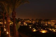 Paisagem da noite com palmeiras e lanternas Foto de Stock Royalty Free